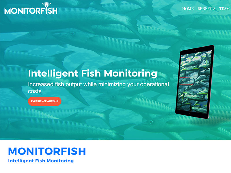 Monitorfish – Intelligent Fish Monitoring